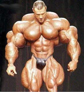 http://3.bp.blogspot.com/_ZhTVlJz5kZc/SPWI5ePCfmI/AAAAAAAAAlU/kyS4mGIo62c/s320/muscles.jpg
