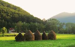 Haystacks!