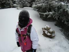 Waumbek, December 2008