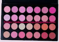 28 blusher palette (available but only 5pcs)