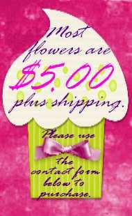Flower Clip Info.