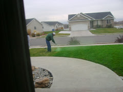 Jay spraying our grass green...