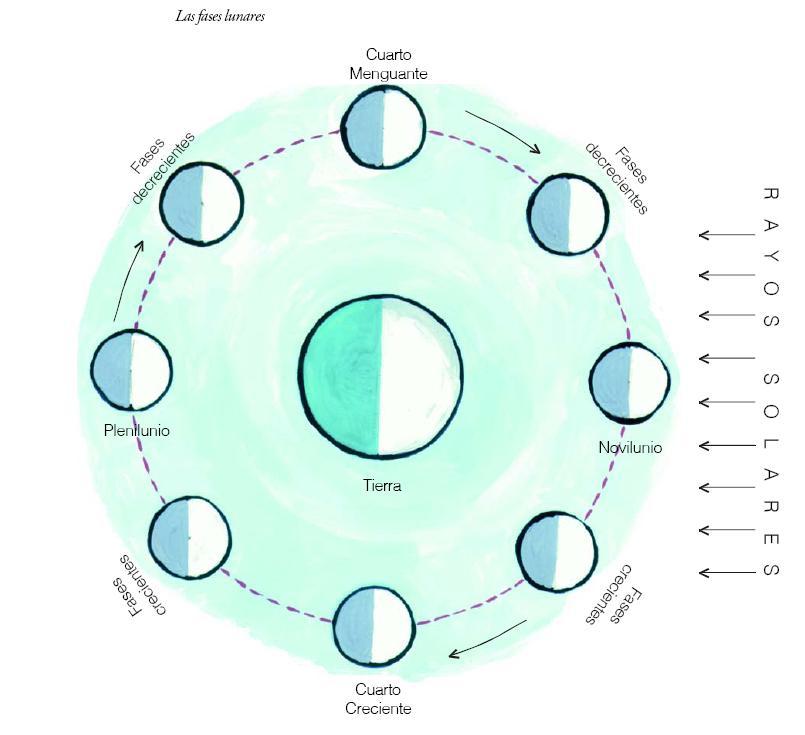 """... SE COMPARTE: CIENCIAS NATURALES: """"Observando la luna desde el aula"""