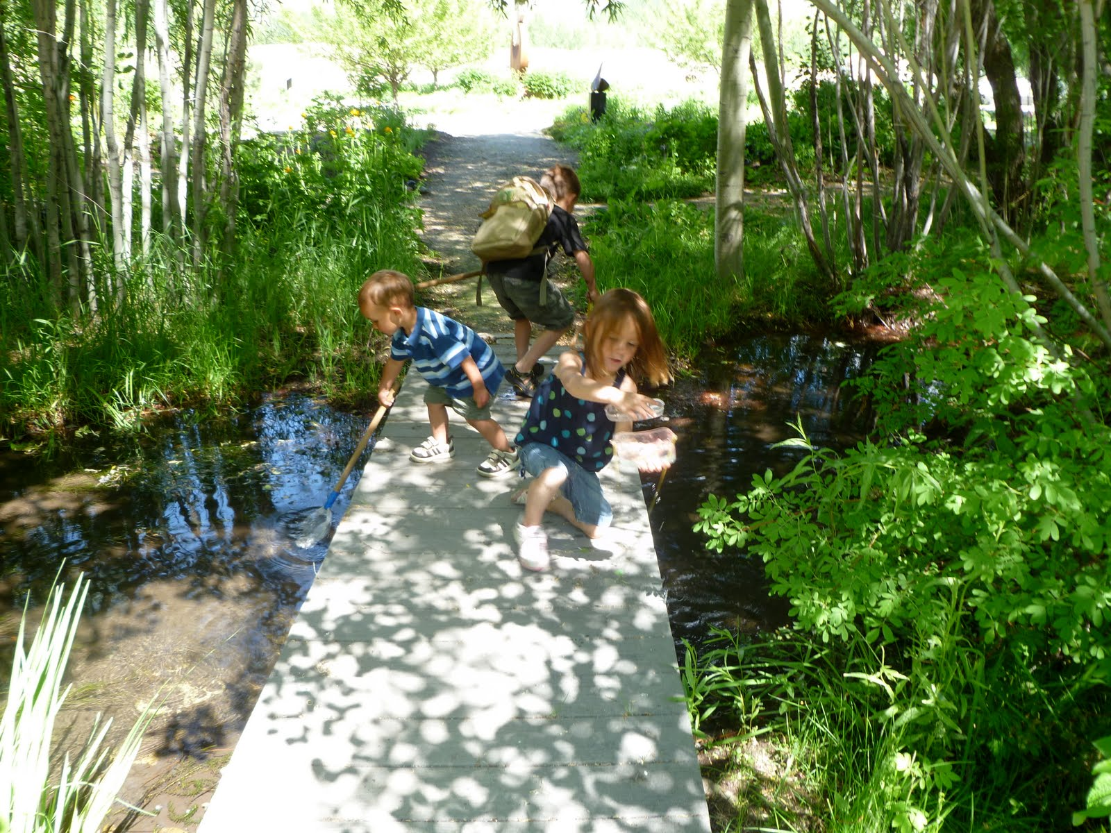 The Kid Friendly Sawtooth Botanical Garden
