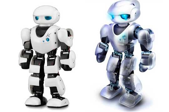 Roboter Bausatz: : Spielzeug