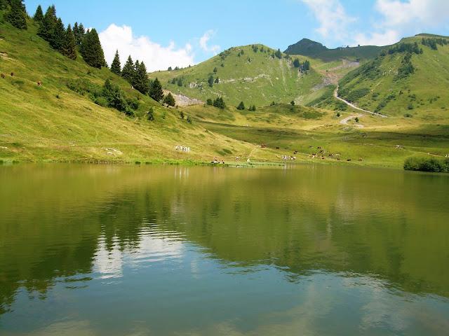 le lac de joux plane
