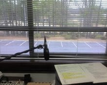 Duke Williams Office View