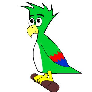 Parrot Cartoon Bird