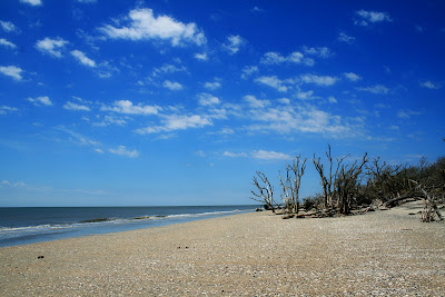 beach at botany bay south carolina