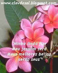 Minha Linda Flor