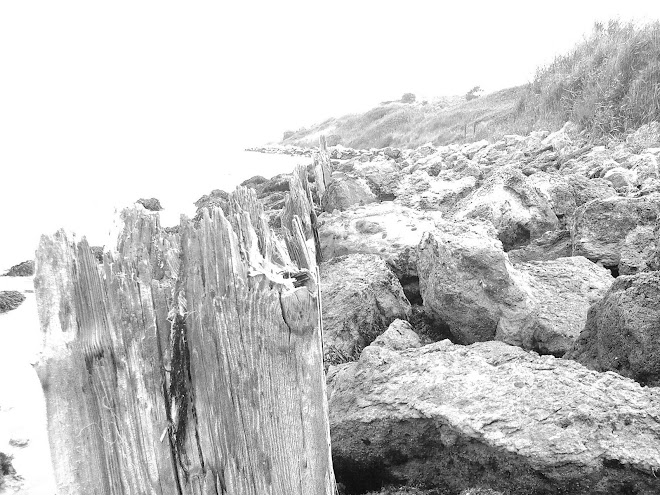 ROCKS AND WOODEN POST