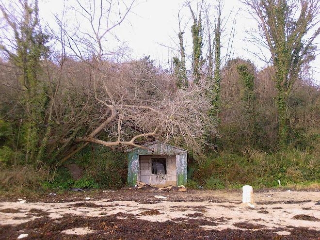 HUT AT CASTLE COVE