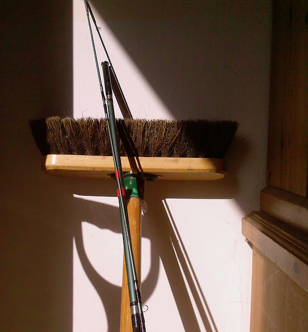 FISHING ROD AND BROOM