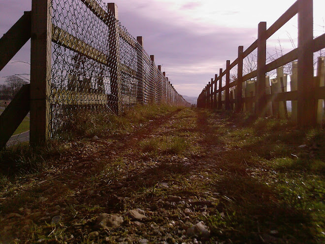 PATH BETWEEN FENCES