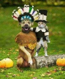 Pilgrim Pets