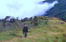 Monte Crista 967 m