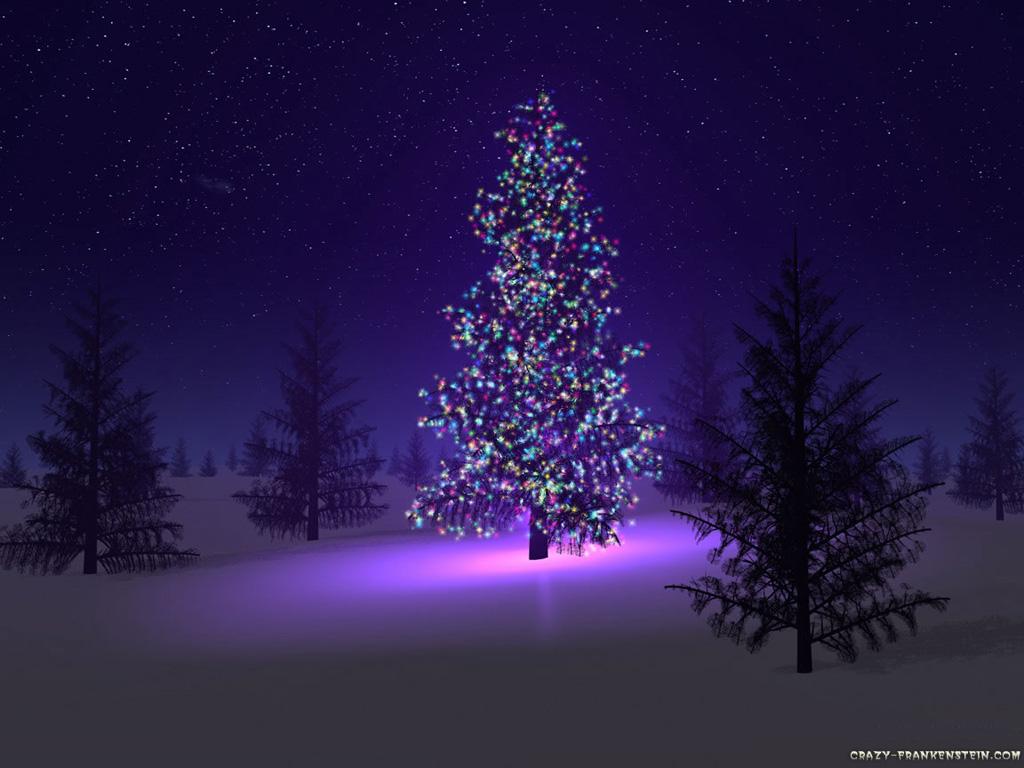http://3.bp.blogspot.com/_Zvz_WbcwJ9k/THoav77r3tI/AAAAAAAABP4/0R0DcGOaDZ4/s1600/beautiful-christmas-tree.jpg