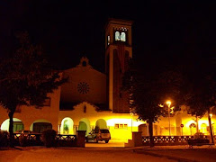 "Sant Narcís ""la nuit"" - Murciélagos Cataguayos"