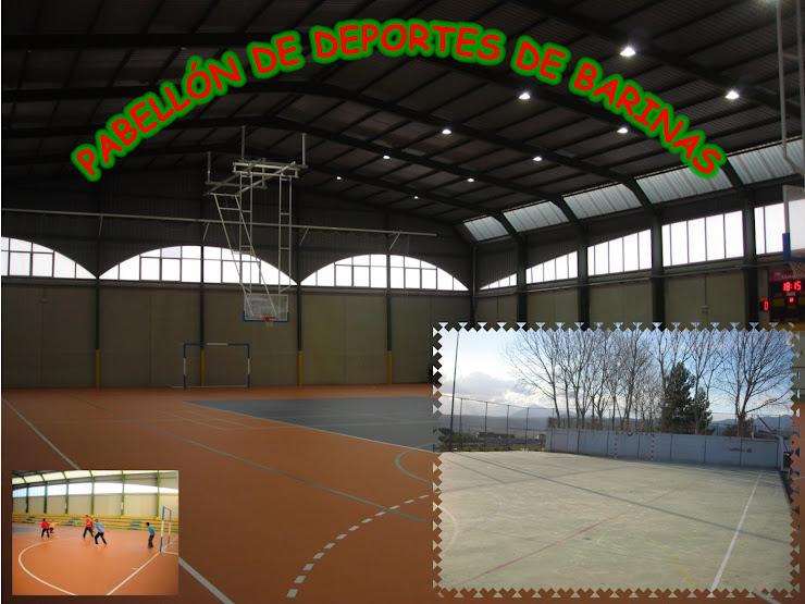 Pabellón de deportes de Barinas