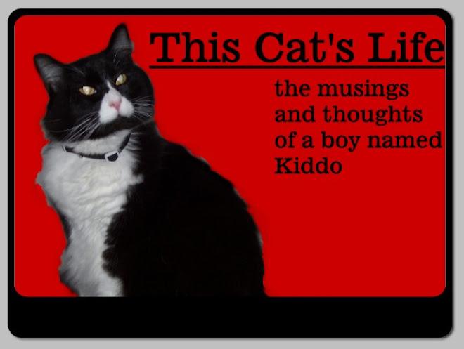 This Cat's Life