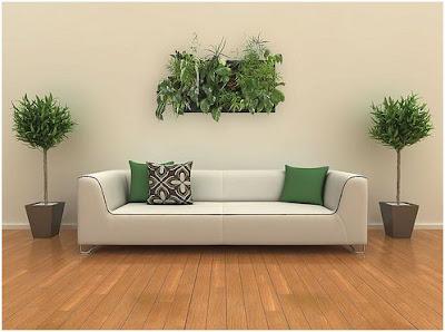 plantas verticales para decorar paredes