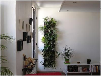 decorar paredes verticales con plantas