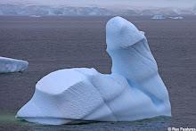 Frutos del calentamiento global