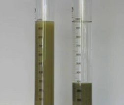 simple flocculation test