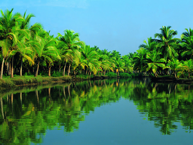 Kerala-backwaters,Kerala-nature,Places-to-see-in-Kerala