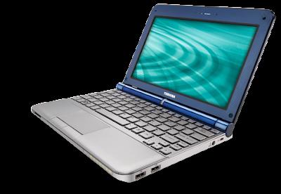 Netbook Toshiba NB205-N325B