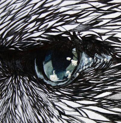 """Oeil d'aigle - """"la chute d'icare"""" (détails encre sur bristol avec lavis)."""