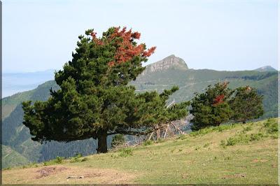 La punta de Gallarraga desde Kamaraka