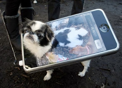 Chien en Apple iPhone