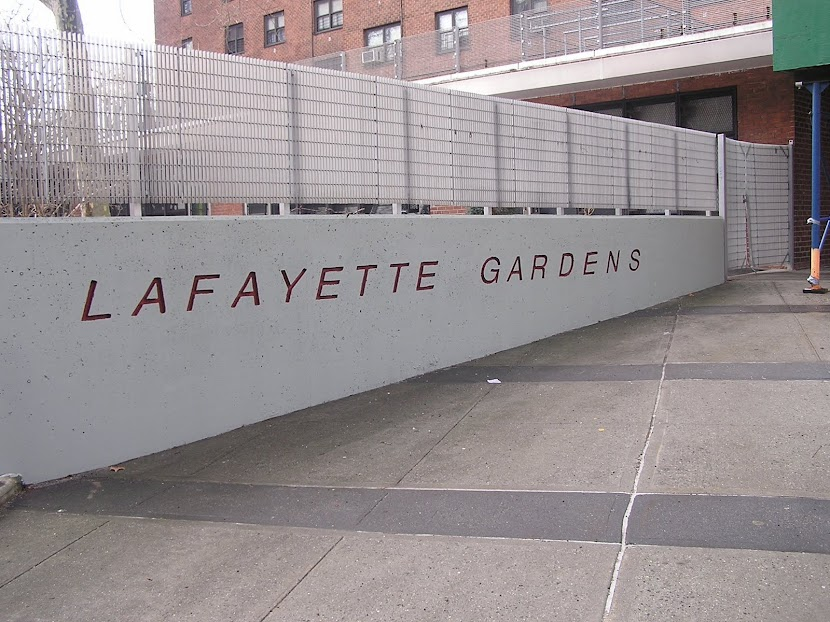THE LAFAYETTE GARDENS