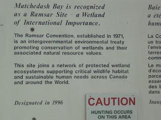 Matchedash Bay