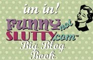 Funny not Slutty Big Blog Book