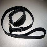 Collar and lead set