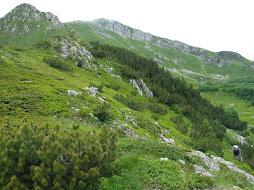 Cap.10 - Alpe Tre Potenze (1940 m)
