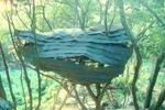 ダ・ヴィンチ・グリットによるツリーハウス