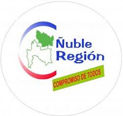 Apoyando Ñuble Región