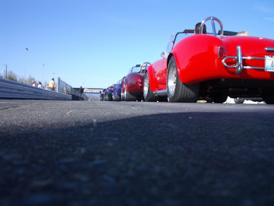 Cobras on grid - Subcompact Culture