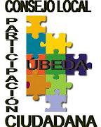 Estatutos Consejo Local de Participación Ciudadana