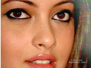 riya-sen-south-india-actress-exotic-eyes