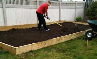Raised-Garden-Box-Bed-Raking-Dirt