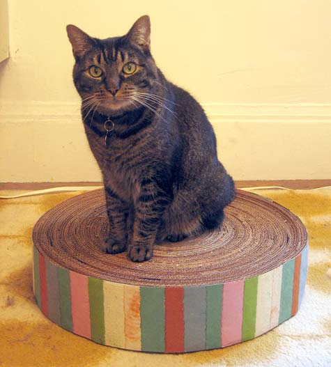 DIY Cat Cardboard Scratching Pad on cardboard cat scratching pads