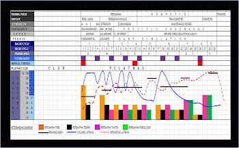 Contoh rancangan Periodisasi linear