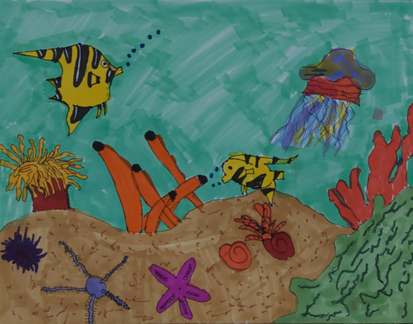 How to draw coral Coral reef coloring pages for kids - Coloring Coral reef pictures for kids