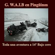 pingüinos 2010