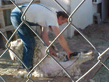 Danny shearing Falkor