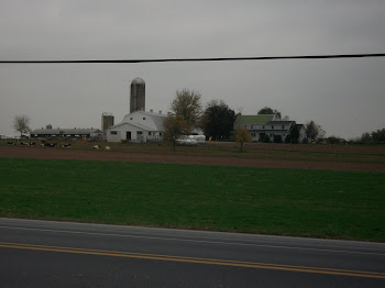 Big Amish farm